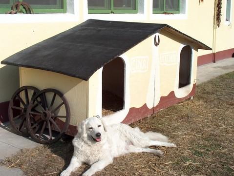 Hundehütte und Sina