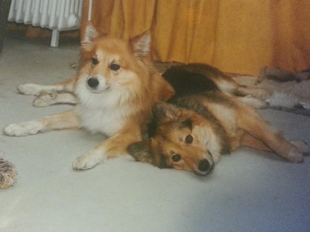 Jeany und Jonas 1998