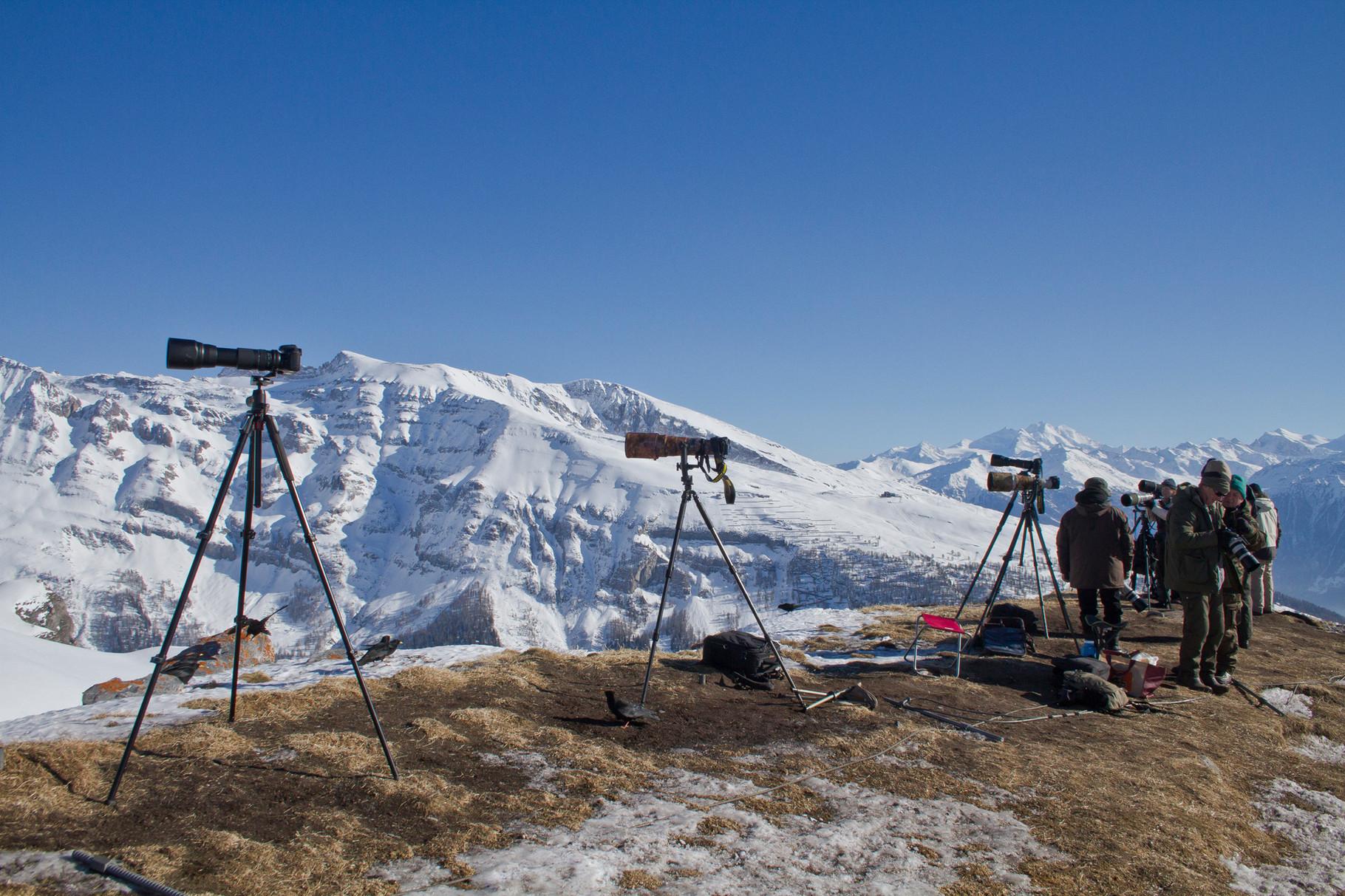 Auf dem Grat bei der Seilbahnstation sind immer viele Fotografen und Beobachter anwesend...