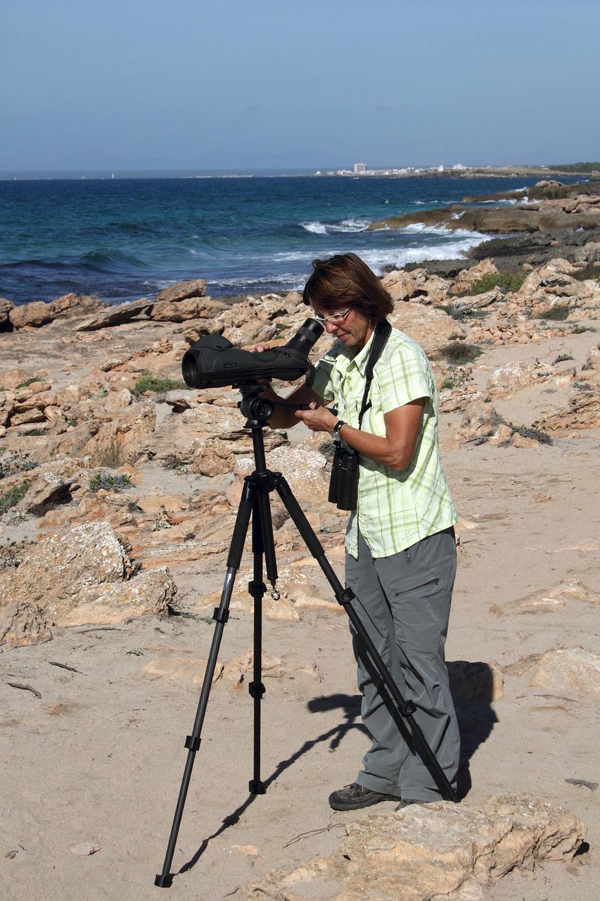 Edith sucht das Meer beim Cap de Ses Salines nach Meeresvögeln ab