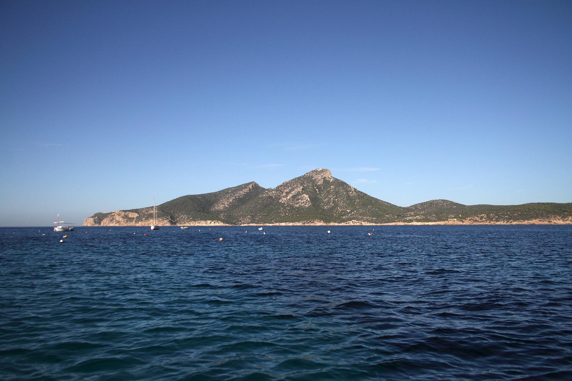 Die kleine Insel Dragonera ist Heimat vieler Eleonorenfalken
