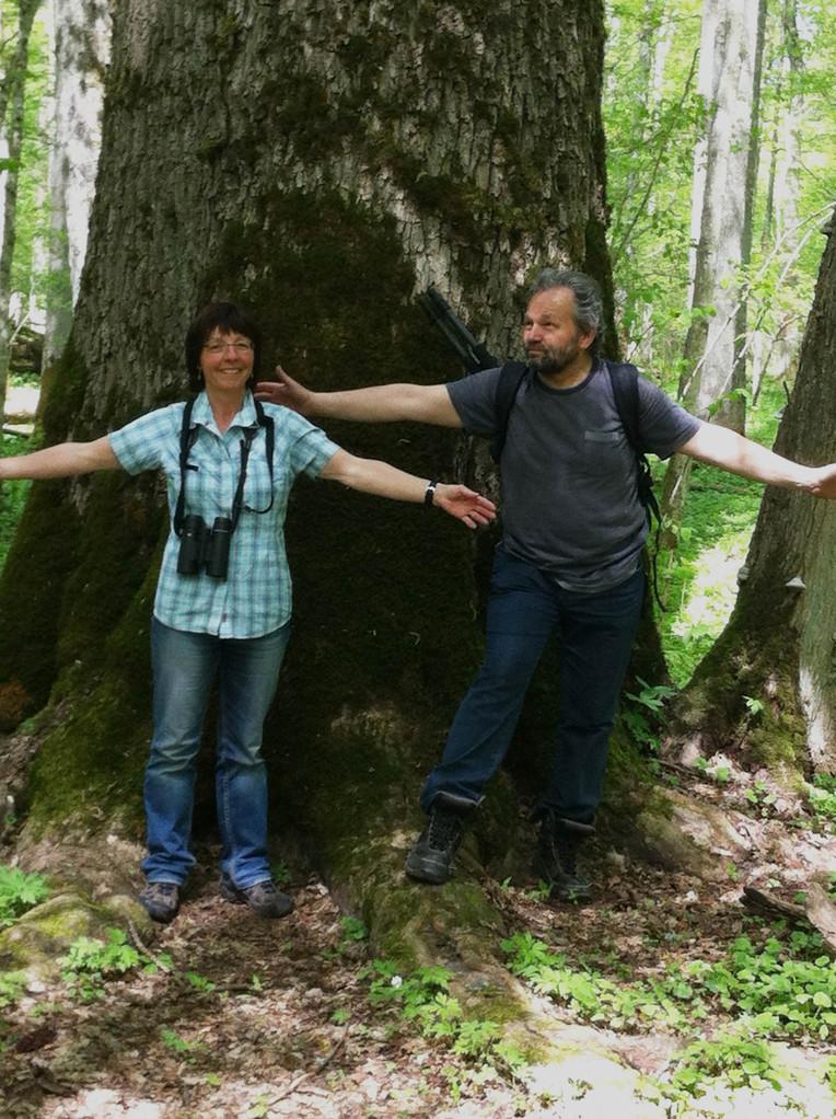 """""""Waldunterricht"""" mit unserem Guide Arek"""