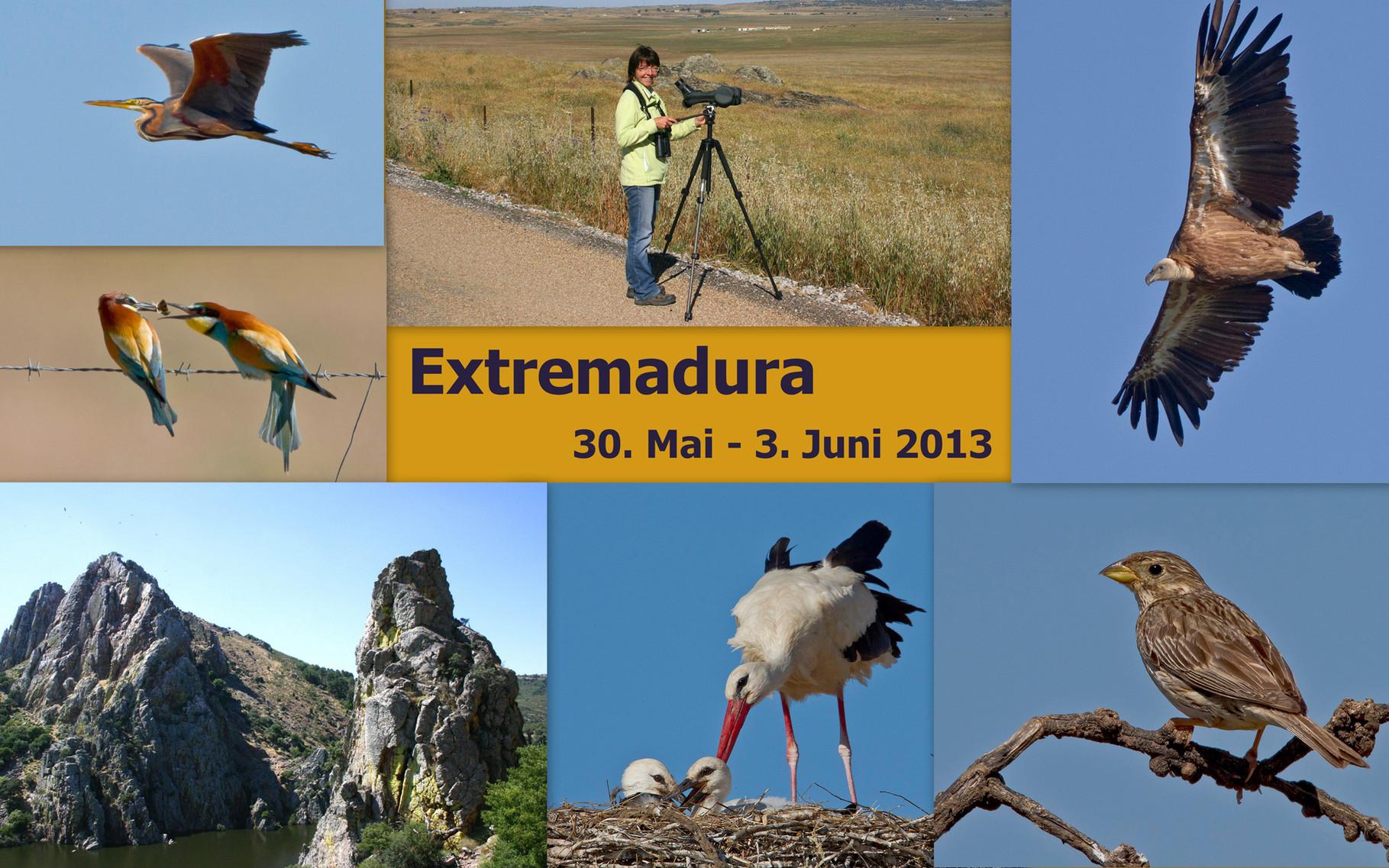 Starte die Bilder-Galerie unserer Extremadura-Reise Mai/Juni 2013