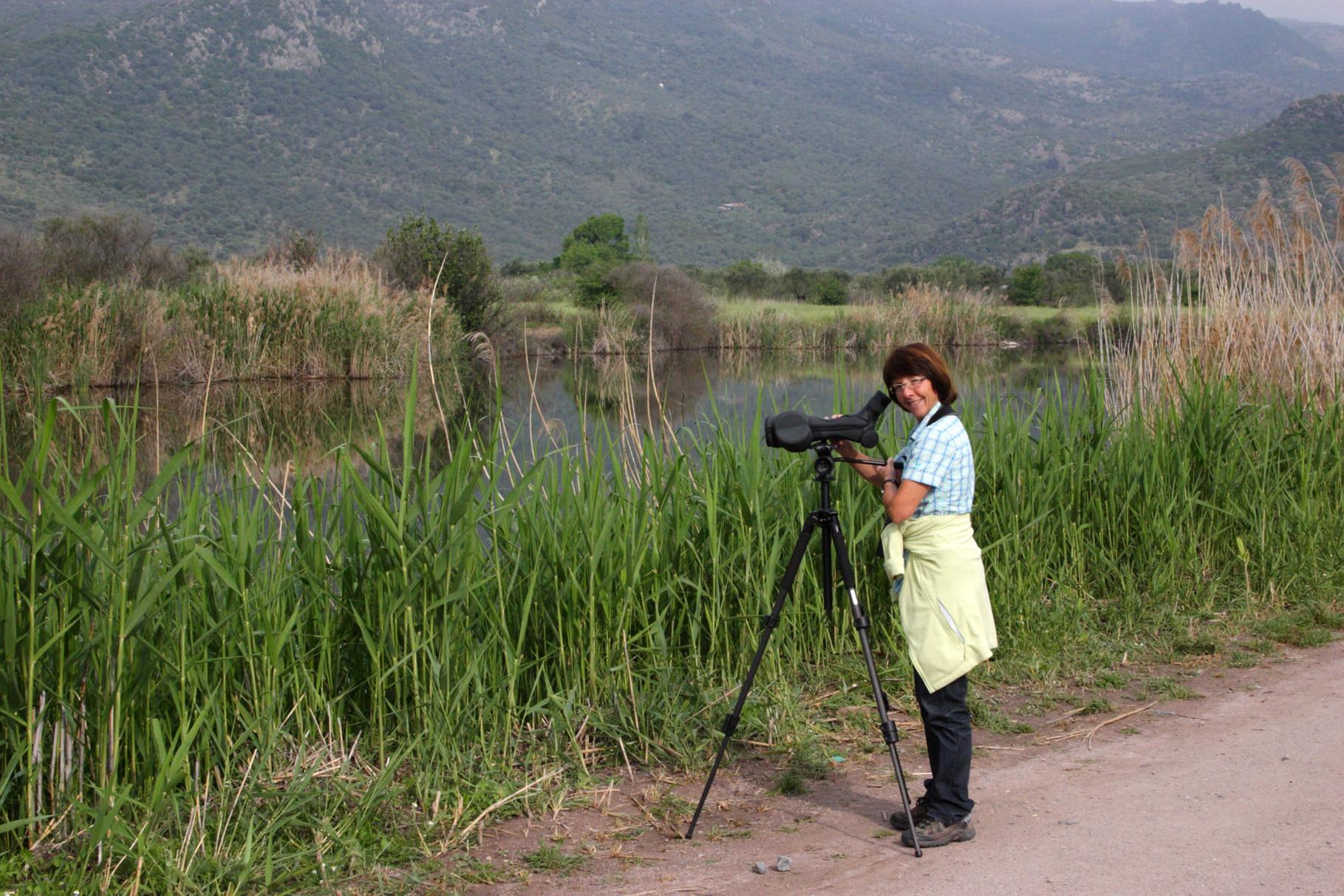 Der Metochi Lake in der Nähe von Kalloni ist bei Ornithologen sehr beliebt...