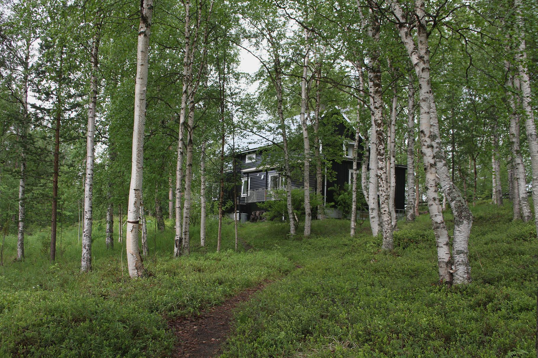 Schön gelegen direkt am Pasvik-Fluss: unsere Unterkunft Birk Husky B&B