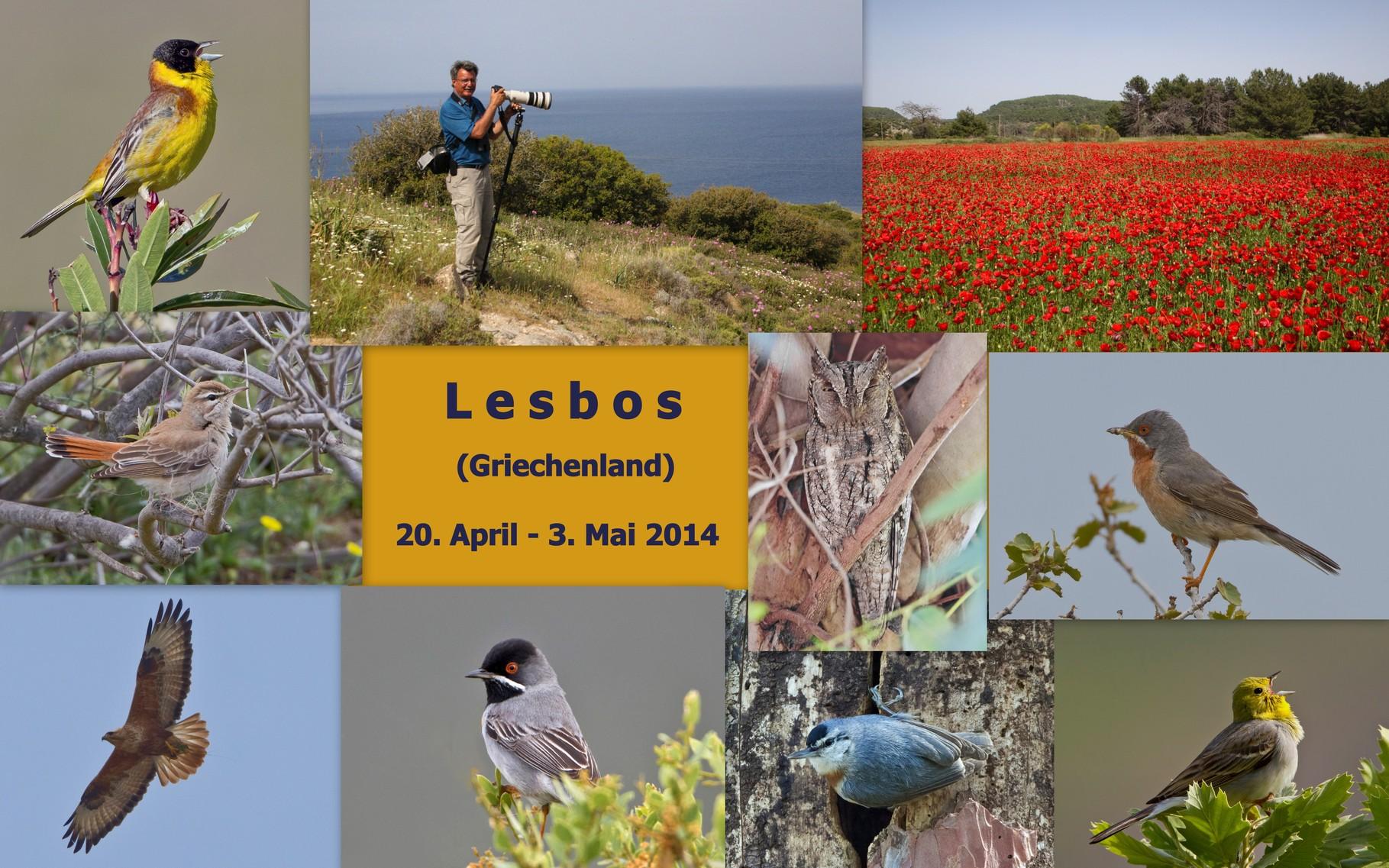 Starte die Bilder-Galerie unserer Lesbos-Reise im April/Mai 2014