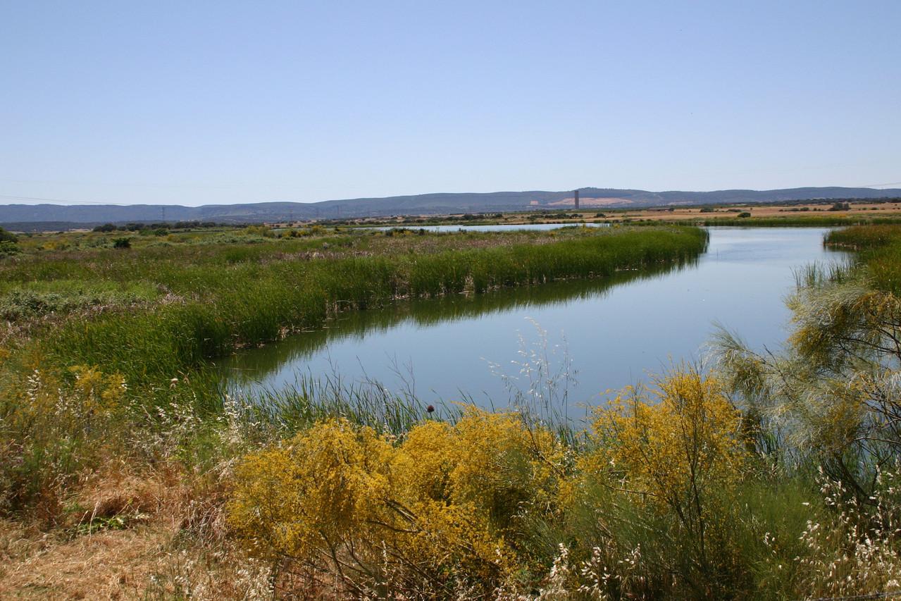 Feuchtgebiet am Arrocampo-Stausee (Kühlwasser-Reservoir des Kernkraftwerks von Almaraz)