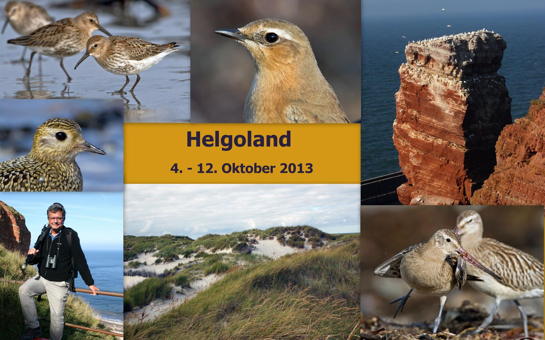 Starte die Bilder-Galerie unserer zweiten Helgoland-Reise im Oktober 2013
