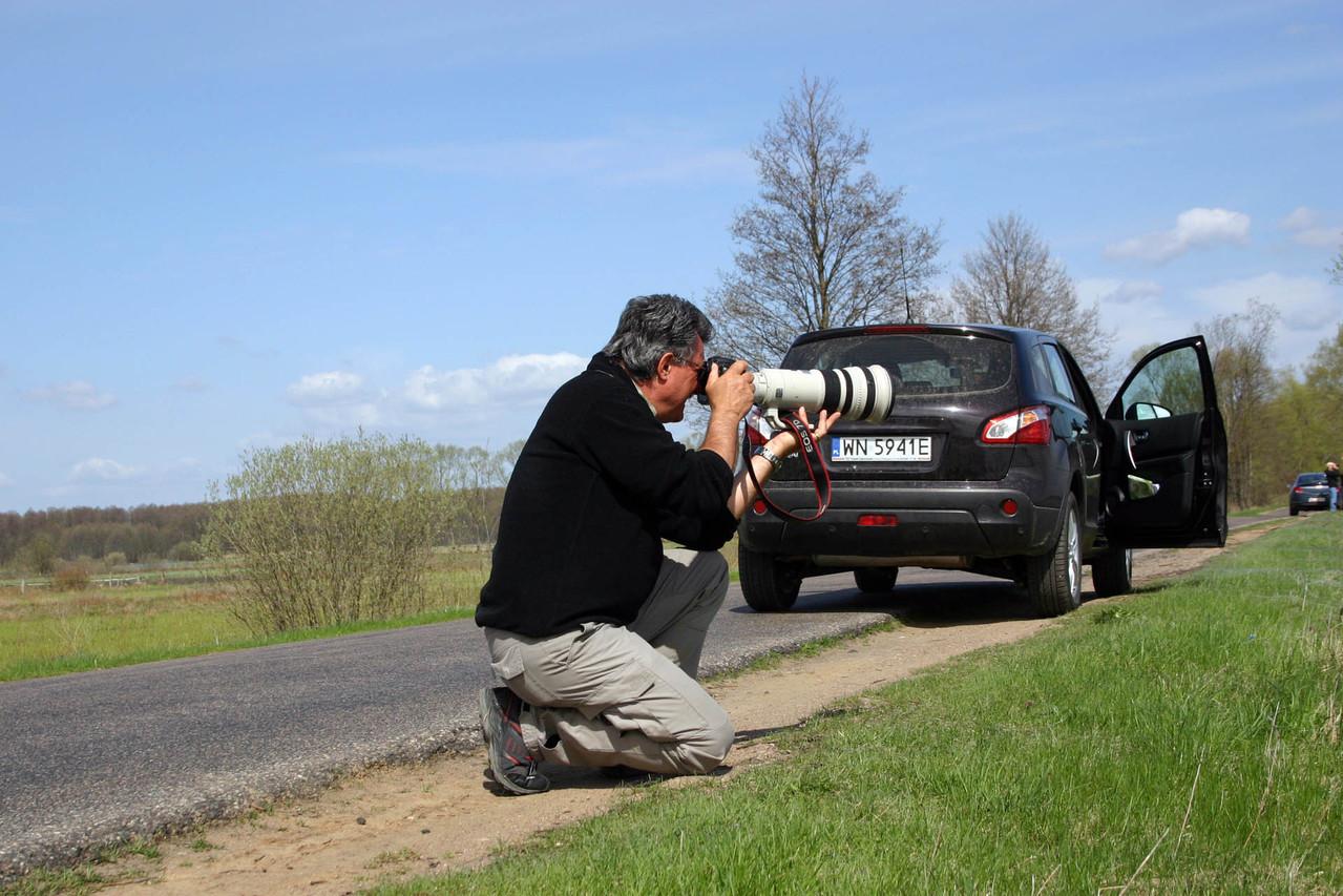 Auf Fotopirsch bei Goniadz