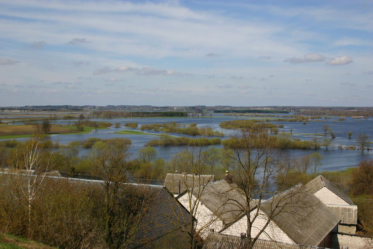 Zusammenfluss der beiden Flüsse Biebrza und Narev. Das Land wird im Frühjahr regelmässig überflutet.