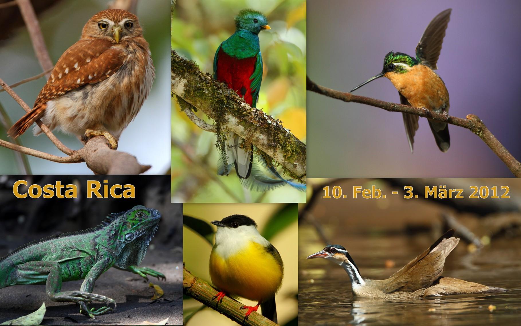Starte die Bilder-Galerie unserer Costa Rica-Reise im Februar 2012