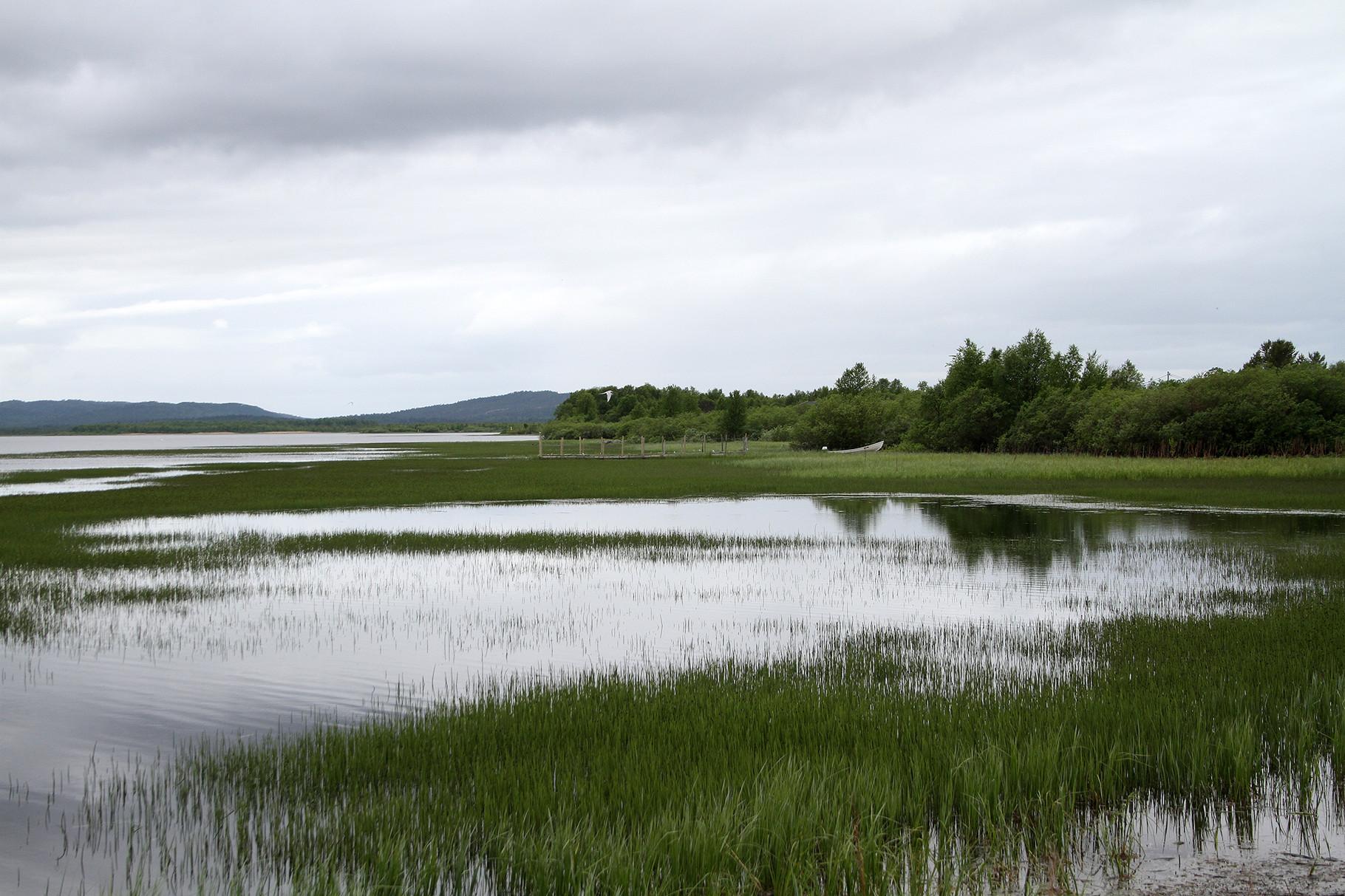 Am Pasvik-Fluss in der Nähe von Skroytnes