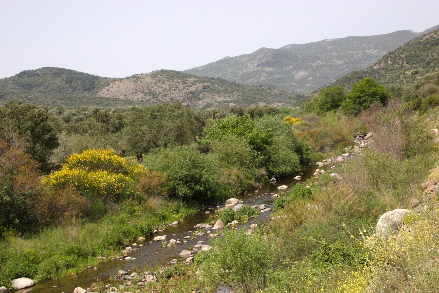 Das Potami-Valley in der Nähe von Kalloni