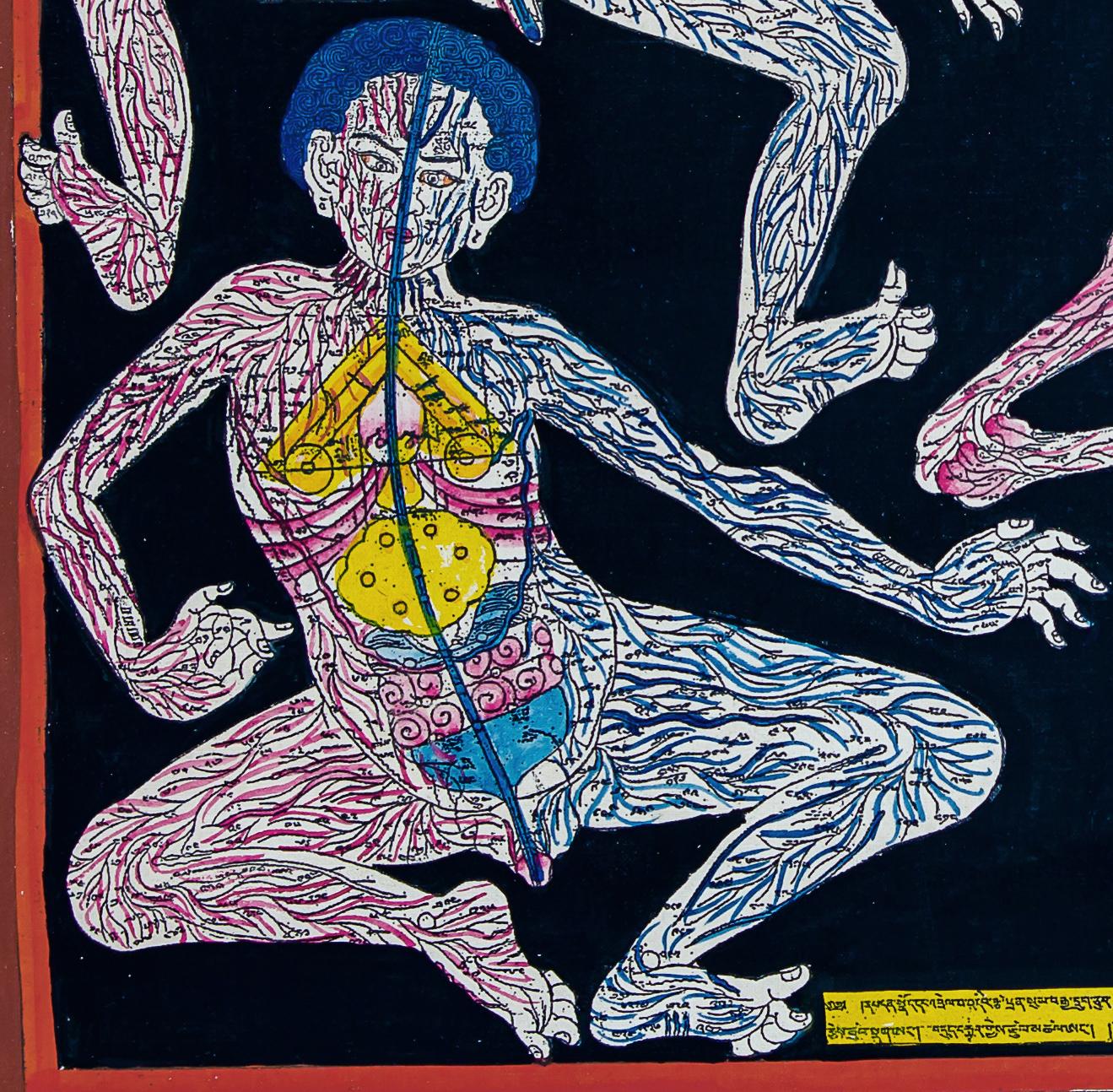 Ungewöhnlich Anatomie Lektion Malerei Bilder - Anatomie Von ...