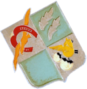 insigne de la 31 ème escadre de bombardement ( collection Vincent Lemaire)