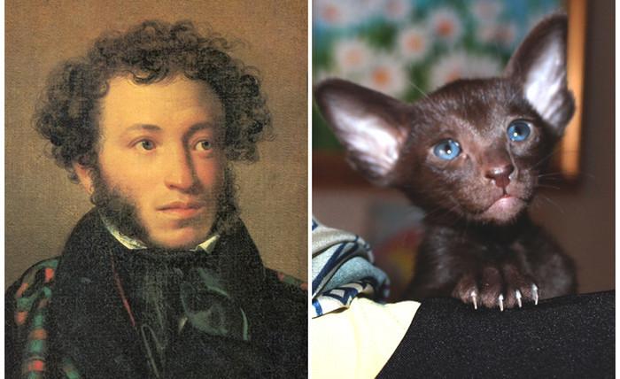 Пушкин & Pushkin
