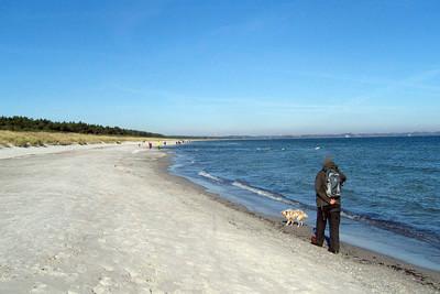 16.10.2011 Foxi und Herrchen am Strand