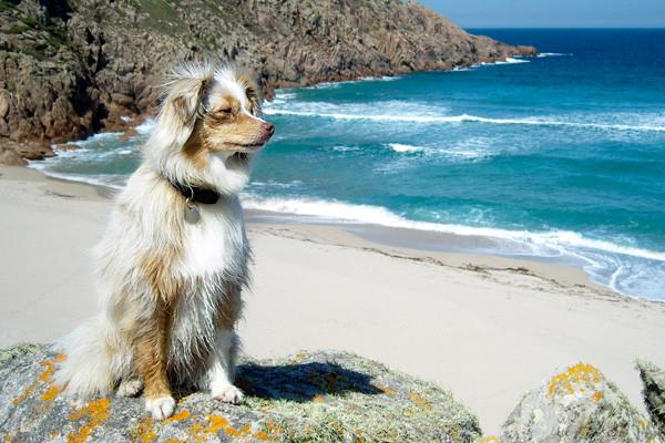 Galizien - unglaubliche Farben!