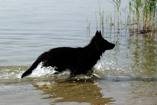 oh je! Das ist ganz nass!