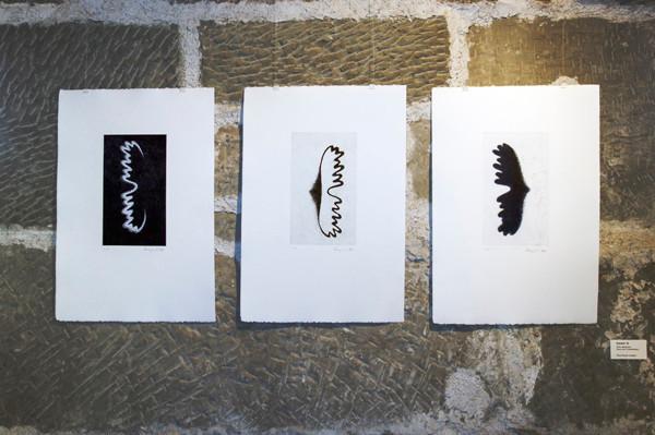 Eliana Bürgin | Geweih, Gutenberg Museum, Schweizerisches Museum der grafischen Industrie und der Kommunikation, Fribourg, Schweiz 2011 | Foto: Lucas Kunz