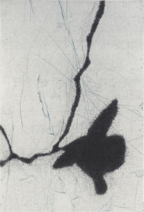 Eliana Bürgin-Lavagetti | Reflexion 2018. Roulette, Kaltnadel. Kupferplattenformat 10 x 15 cm, Blattgrösse 28 x 38 cm. Fünf Exemplare auf Zerkall Bütten 250 g/m2.
