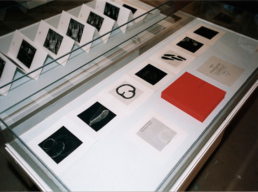 Eliana Bürgin | Ausstellungsraum auf der Lyss in Basel, 2002