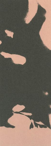 Eliana Bürgin-Lavagetti | FormenFunde 2003/2004, Siebdruck, Kupferplattenformat 8 x 21,5 cm, Blattgrösse 23 x 38 cm, Zerkall Bütten, 250 g/m2