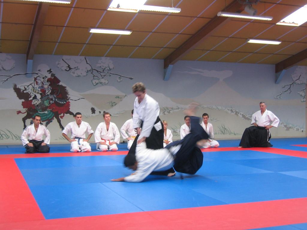 Techniques d'Aïkido