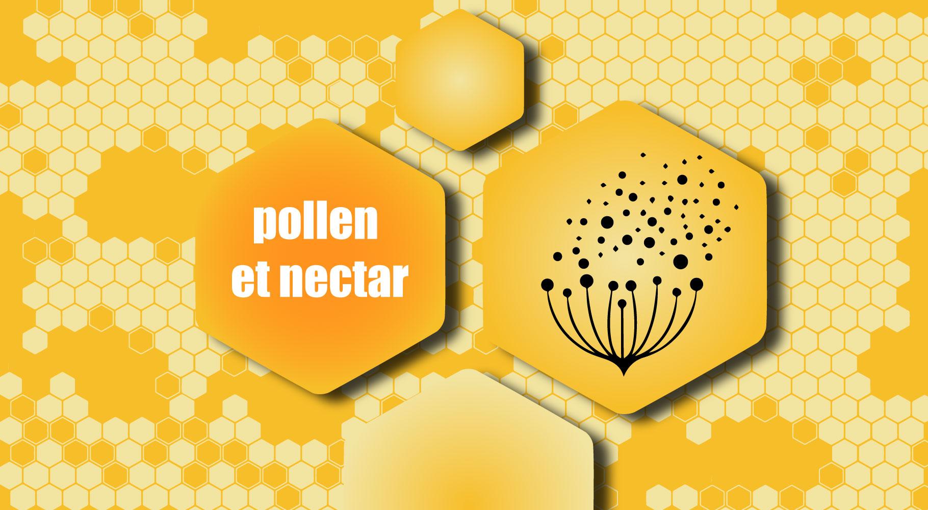 Pollen et nectar