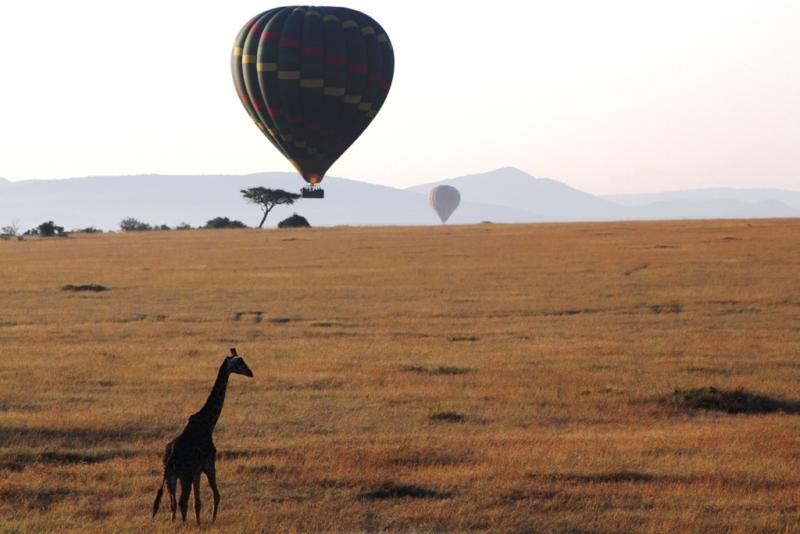 Ballonfahrt über der Savanne