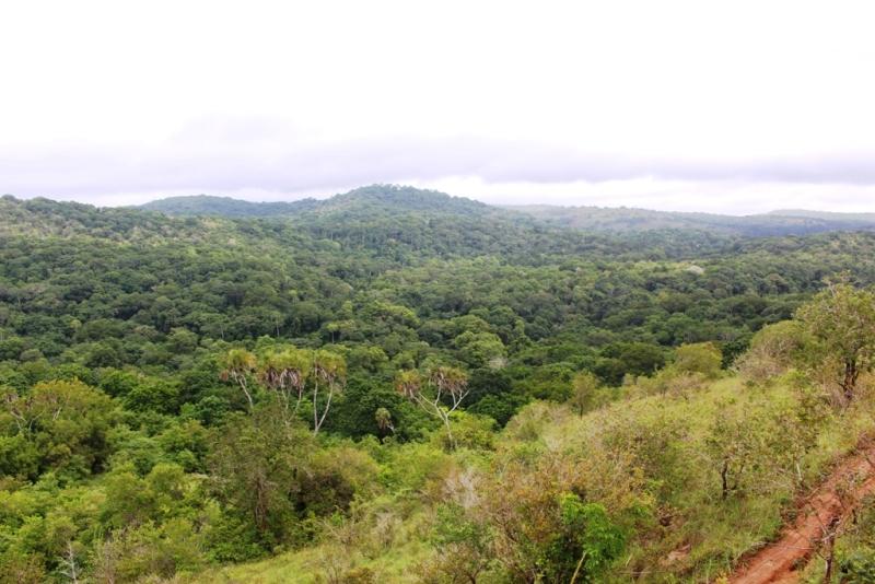 ein Blick über die Landschaft