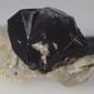 Stannum metallicum