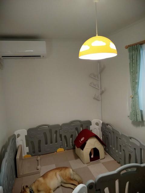 エアコン・プラスチック製の照明・木の突っ張り棒以外、災害対策として、頭上・壁面にあえて物を置きません。