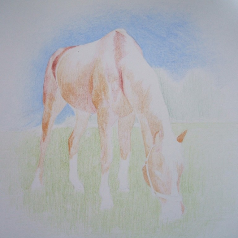 1h: Grundierung des Pferdes mit den Basisfarben