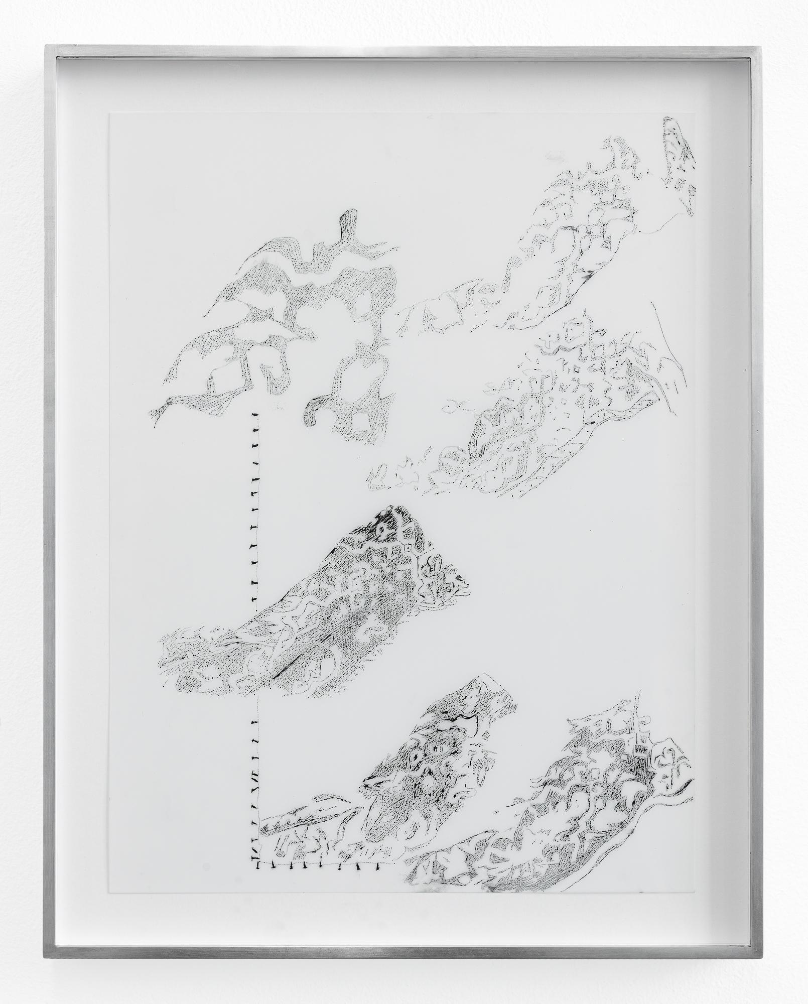 """Johanna Tiedtke, aus der Serie """"Flora"""", Tusche auf Transparentpapier, 30,5 x 22,7 cm 2021"""