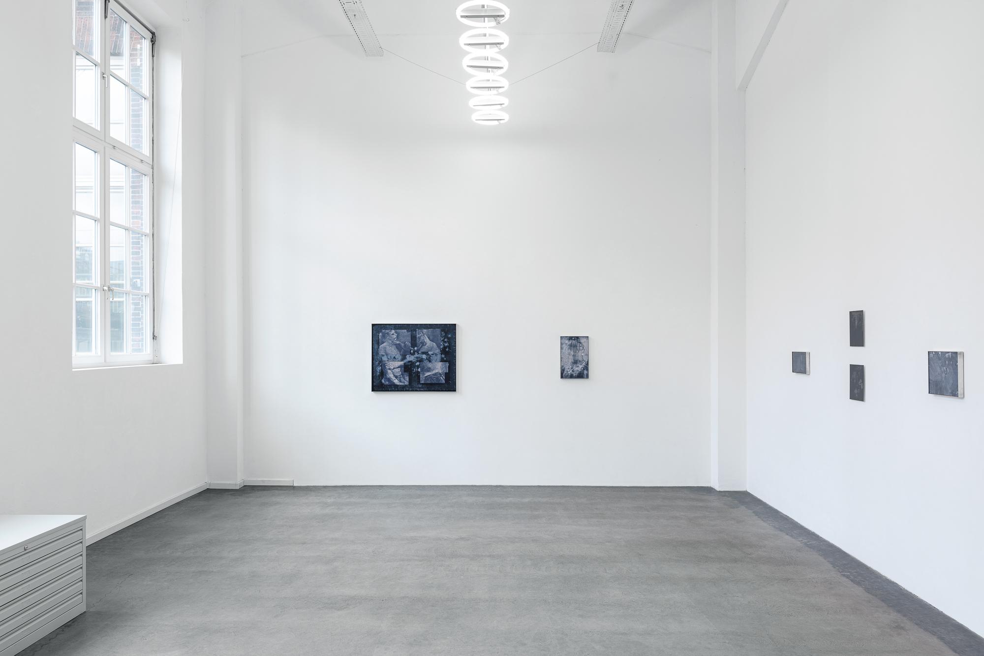 """Ausstellungsansicht """"FLORA"""" Soloausstellung Johanna Tiedtke, Galerie Hollstein von Mueller, Galeriehaus Hamburg"""