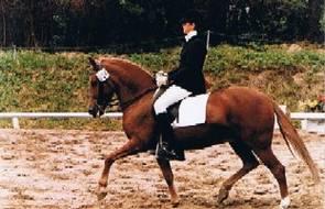1985 Tina Richter mit ihrem Erfolgspony Esther