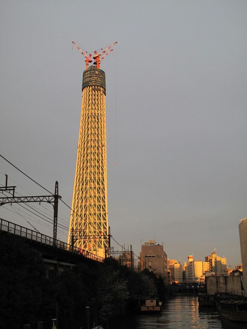 ◆建設中の東京スカイツリー。