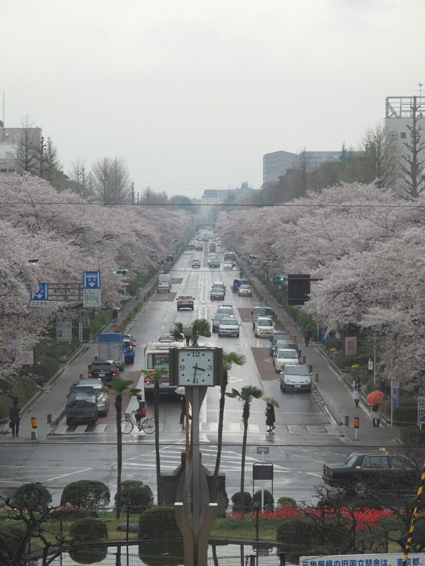 ◆東京国立市。