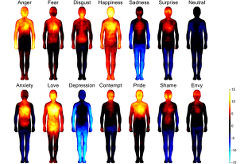 Mapa de Emociones, Emociones, Tristeza, ira, miedo, depresión, desagrado, sorpresa, ansiedad, vergüenza, envidia, amor