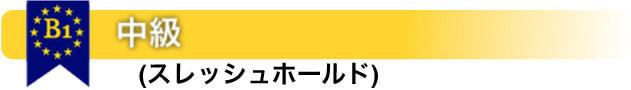 B1 中級-(スレッシュホールド)