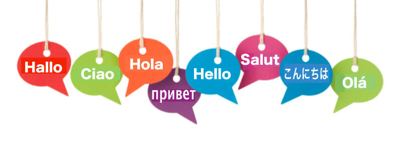 EuroLingual's Blog is a Multilingual Generation!