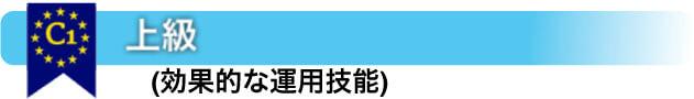 C1 上級- (効果的な運用技能)