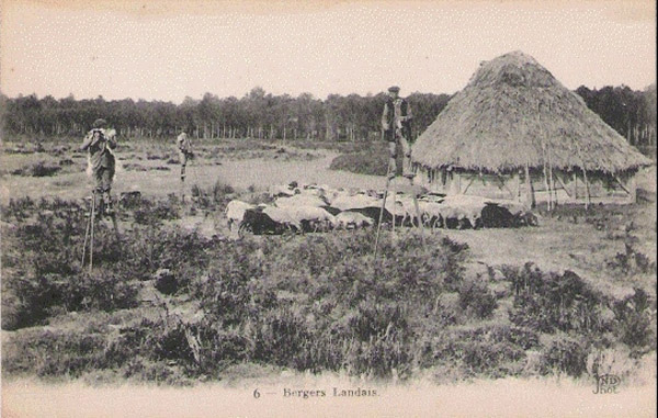BOHA!35 Carte Postale : Berger landais sur échasse fifre