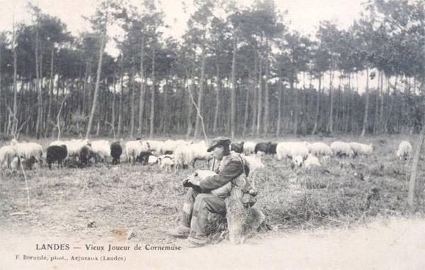BOHA! 15 (BdG) : Carte Postale F. Bernède 1900 colorisée Vieux joueur de Cornemuse