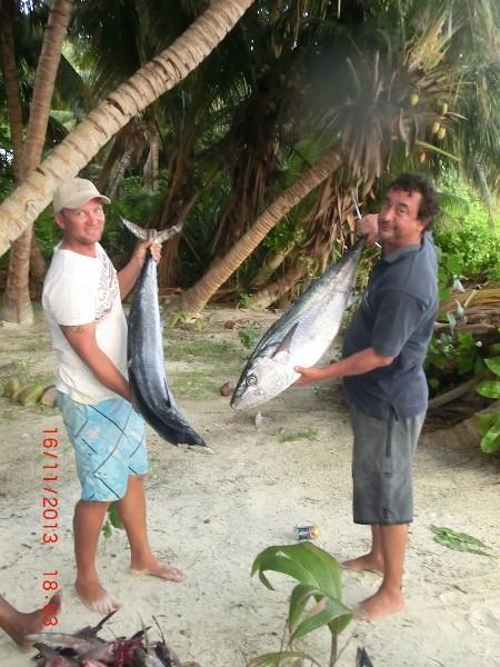 Seychellen angeln Hundezahntun & Wahoo Nov. 13