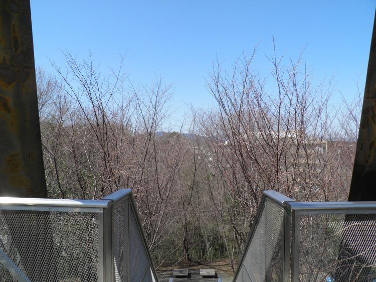 展望台冬場の眺望⑧
