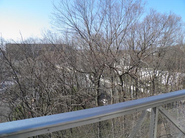 展望台冬場の眺望⑥