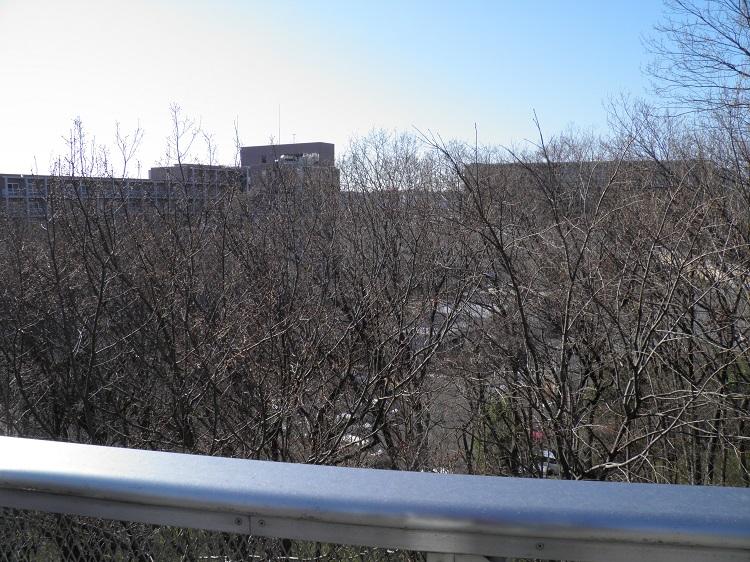 展望台冬場の眺望⑤