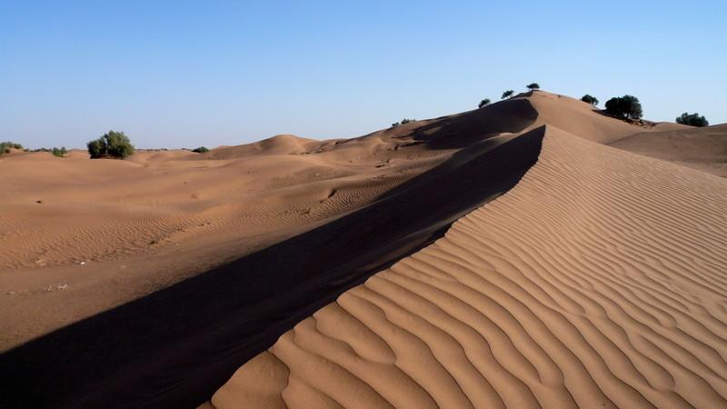 28/01/2009 Le désert de M'Hamid